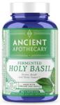 Apothecary Holy Basil