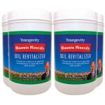 Bloomin Mineral Soil Revitalizer